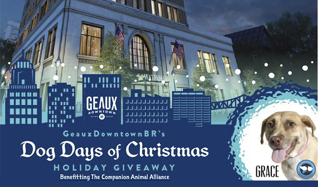 GEAUXDOWNTOWNBR'S DOG DAYS OF CHRISTMAS HOLIDAY GIVEAWAY